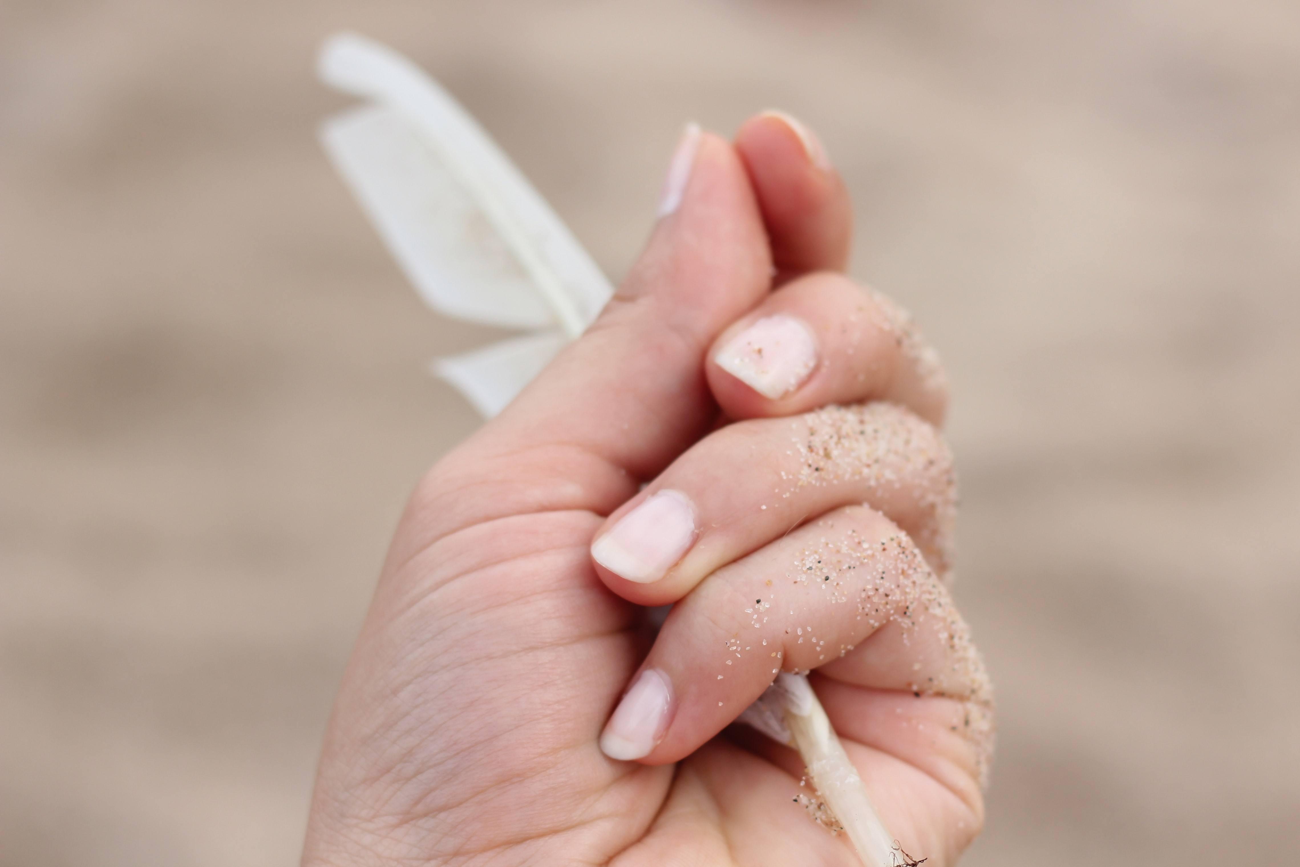 trouver une plume c'est recevoir un signe de son ange