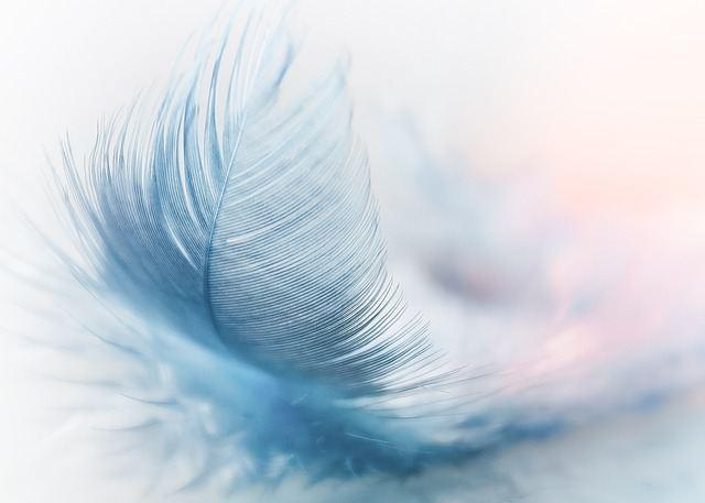 plume-d-ange-pour-demander-une-priere